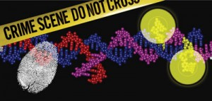 Term papers on dna