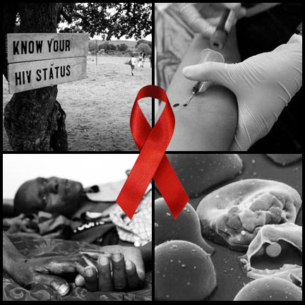 Term papers on aids epidemic